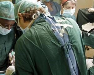 España revalida el liderazgo mundial en trasplantes: 4.769 órganos en 2015