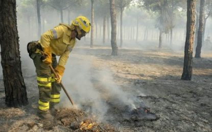 """España, agricultores de Doñana, """"indignados"""" con quienes los relacionan con el incendio"""