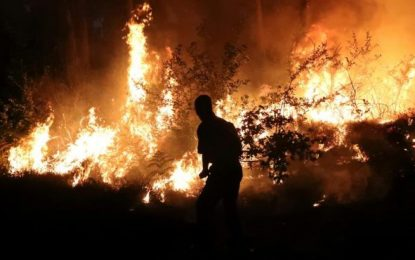 """Cómo atrapar """"in fraganti"""" al incendiario el mismo día del mismo mes"""