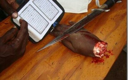 Guerra declarada a la secta independentista terrorista islámica de Bóokòo Haram