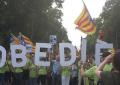 Francia lucha contra el separatismo: Deja el «catalán» en mínimo absoluto en Perpiñán y Rosellón