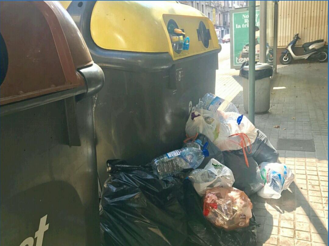 El PP (Sabadell) pide aumentar la frecuencia de limpieza de contenedores en verano