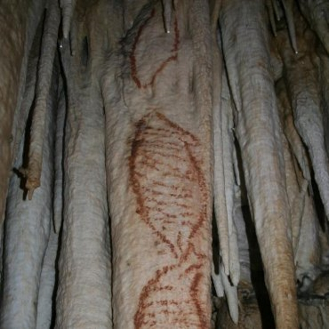 Pintaron en España el primer arte rupestre del mundo
