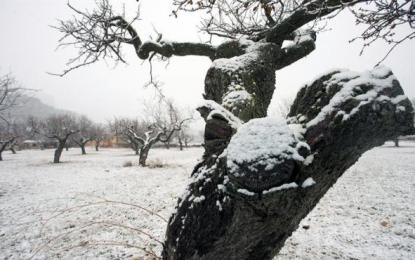 Las copiosas nevadas persisten en España