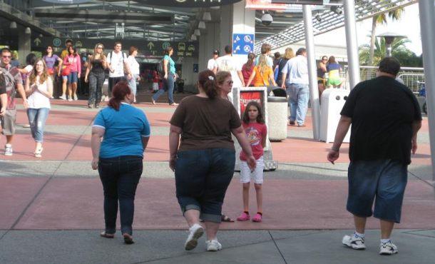 La falta de una proteína favorece la aparición de la obesidad