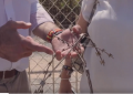 """VOX exige un """"muro de hormigón"""" en Ceuta y la """"devolución inmediata"""" de inmigrantes"""