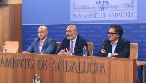 FOTOGRAFÍA. SEVILLA (ESPAÑA), 03.06.2019. Rueda de prensa del Grupo Parlamentario de VOX en el Parlamento de Andalucía sobre las enmiendas a la totalidad de los 'verdes'. Ñ Pueblo